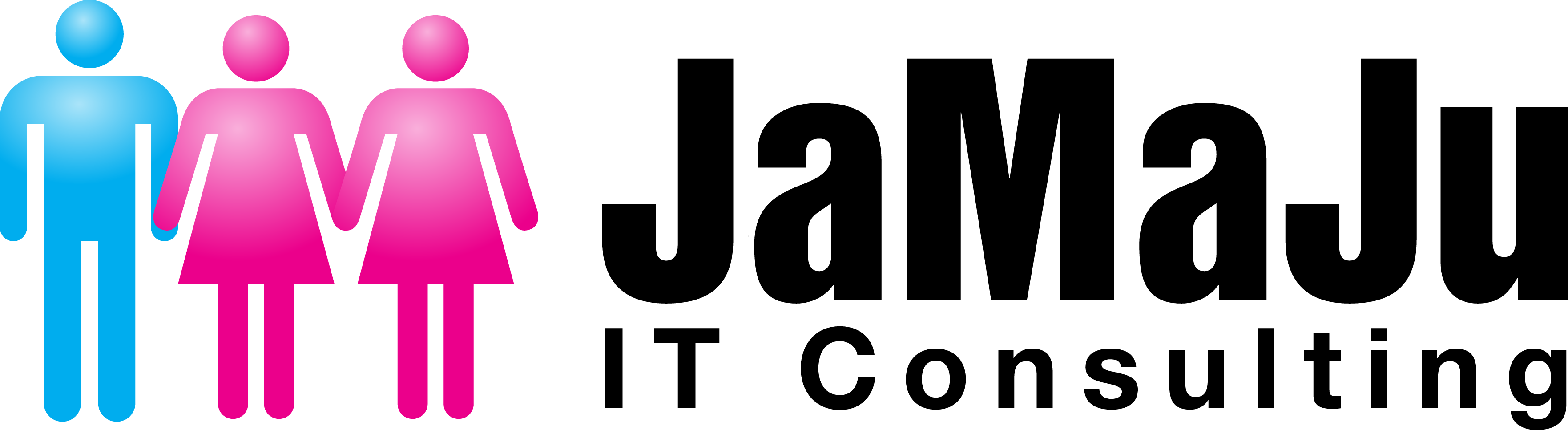 JaMaJu IT Consulting